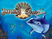 Автомат на деньги Dolphin's Pearl Deluxe