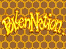 Нация Пыльцы