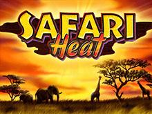 Safari Heat в Вулкане удачи на деньги