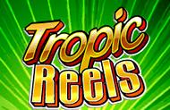 В клубе на деньги Тропические Барабаны